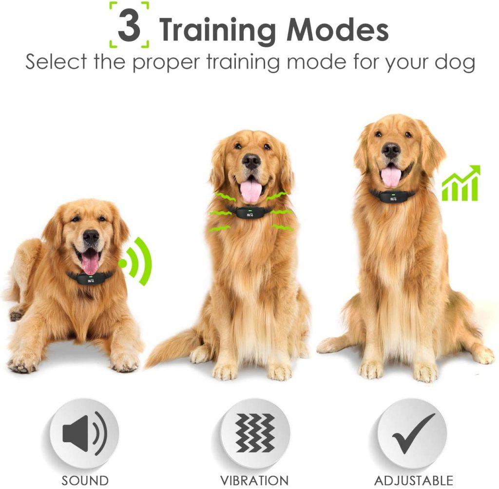 DOG CARE Dog Waterproof Training Collar