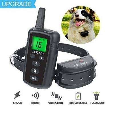 What Is The Best Electric Dog Collar For Training