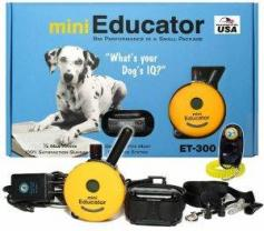 E-Collar Educator Training