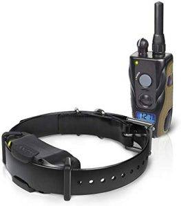 Dogtra 1900S dog training collar system