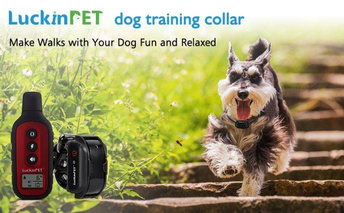LuckinPET Dog Training Collar