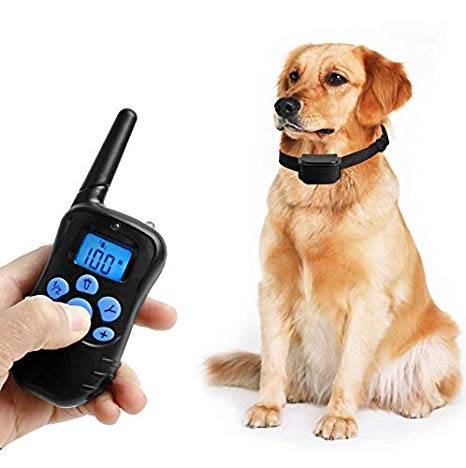 Petrainer PET998DRB1 Rainproof Dog Training Shock Collar with Remote