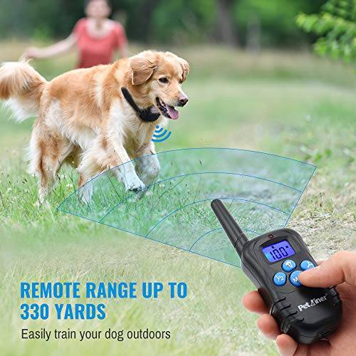 Rechargeable Dog Shock Collar with Remote