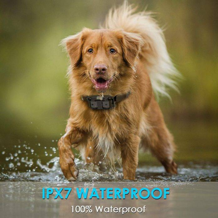 Slope hill dog training collar waterproof dog shock collar
