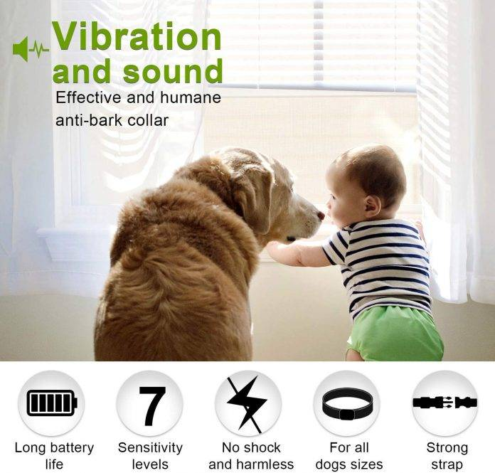 Dog No Bark Collar with Smart Detection Vibration and Harmless Shock