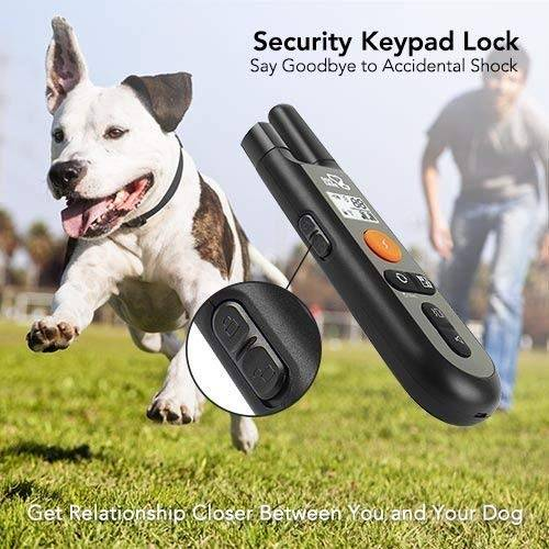 Dog Training Collar - Rechargeable Dog Shock Collar