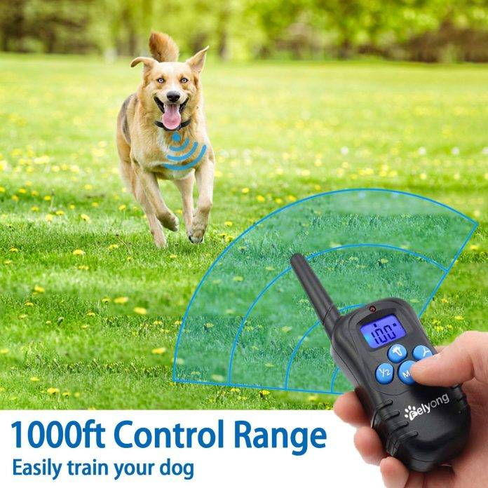 Felyong Dog Training Collar with Remote – Affordable and Feature-Packed