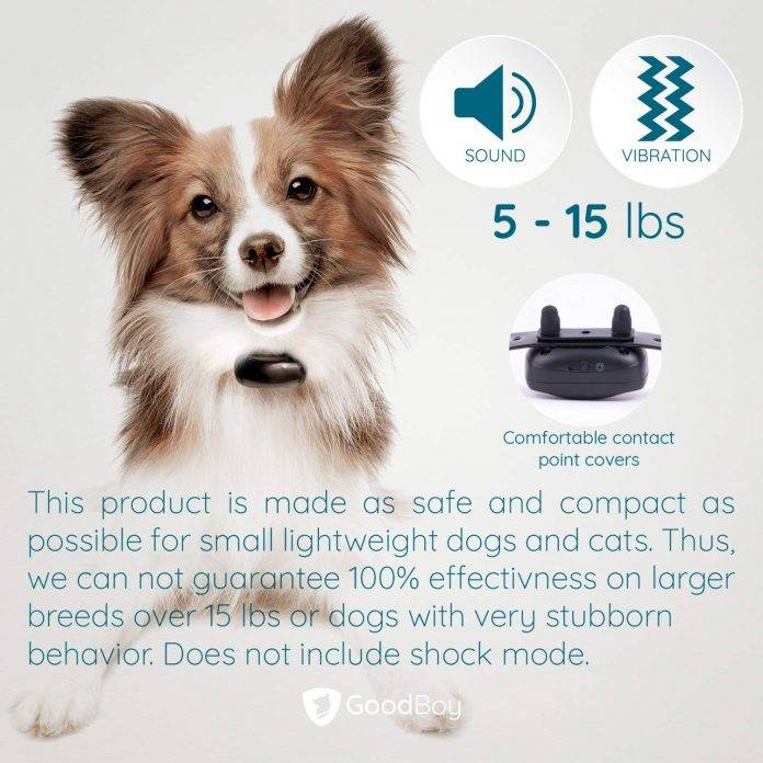 GoodBoy Mini No Shock Remote Collar for Dogs with Beep