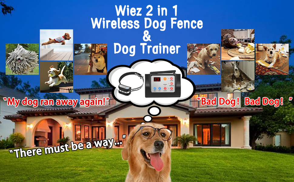 WIEZ Dog Fence Wireless and Training Collar