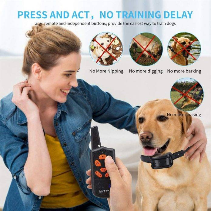 ZENVEY e collar for dogs – Provide Bunch of Quality feature