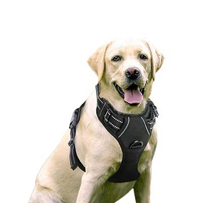 juxzh Truelove Soft Front Dog Harness