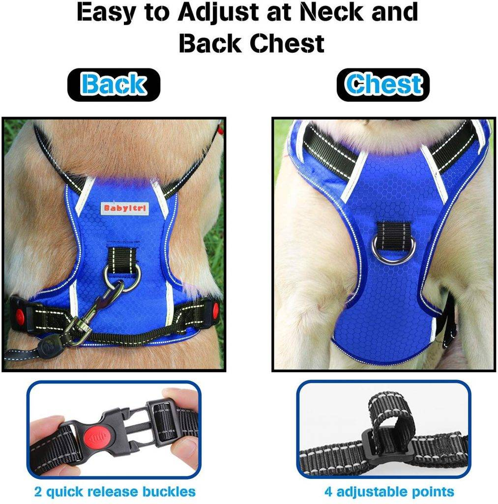 BABYLTRL Big Dog Harness – Best for night use
