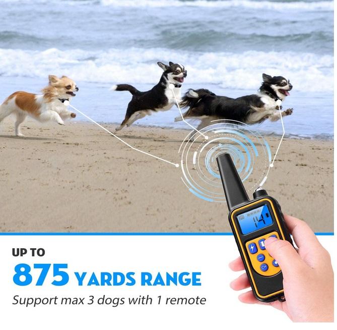 iMounTEK Shock Collar for Dogs