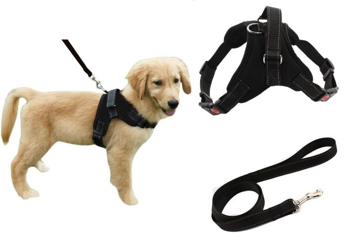 Diego No Pull Dog Harness Reflective Safety Pet Vest
