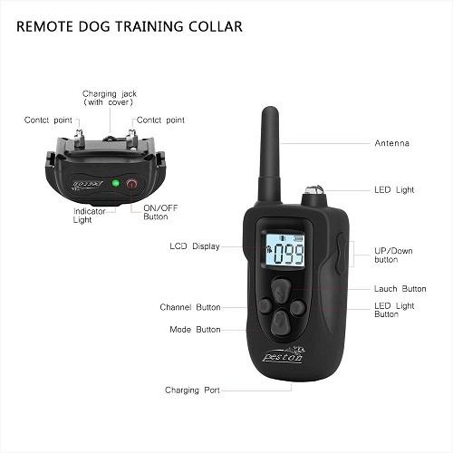 Peston Dog Training Collar