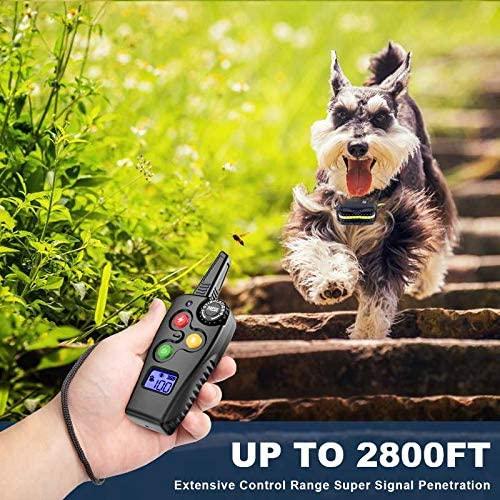 Ankace Shock Dog Collar