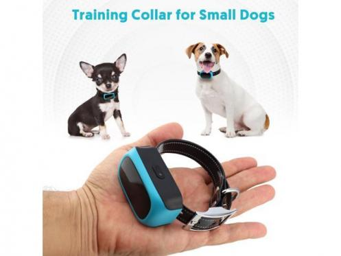 EXuby Tiny Dog Shock Collar for Little Dogs