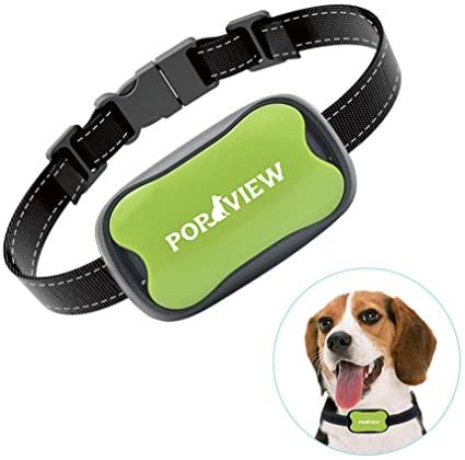 Pop View Dog