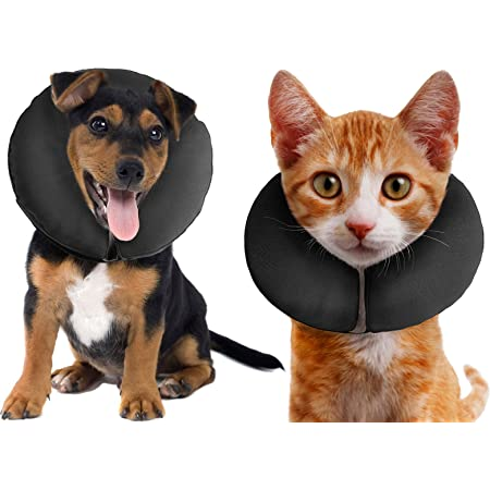 Protective Collar for Cats and Dogs