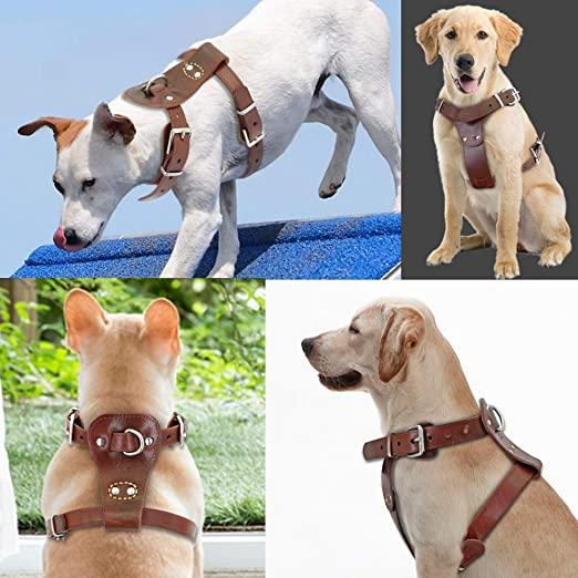 BEIRUI Genuine Dog Harness