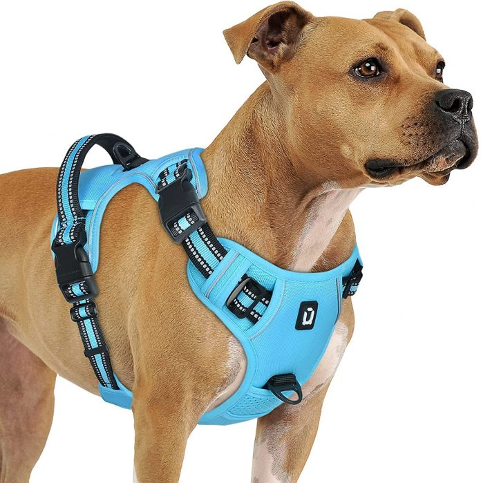 Dog Harness For Large Dogs No Pull