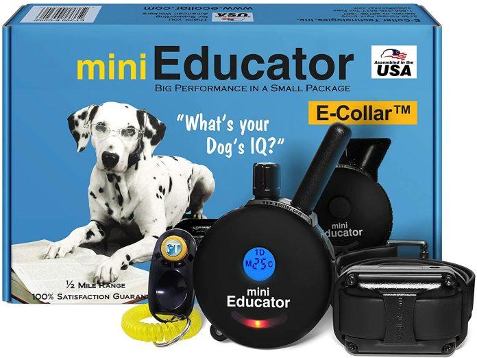 Ecollar Dog Training Collar